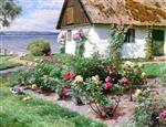 Bild:Rose Bushes and a Cottage by the Water, Sørup