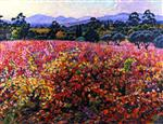 Theo van Rysselberghe  - Bilder Gemälde - Vines in October