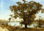 Albert Bierstadt - paintings - A View from Sacramento