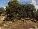 Jean Baptiste Camille Corot - paintings - Fontainebleau Black Oaks of Bras Breau