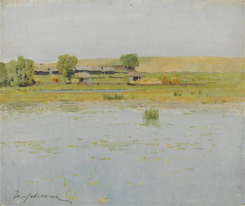 A Flooded Field