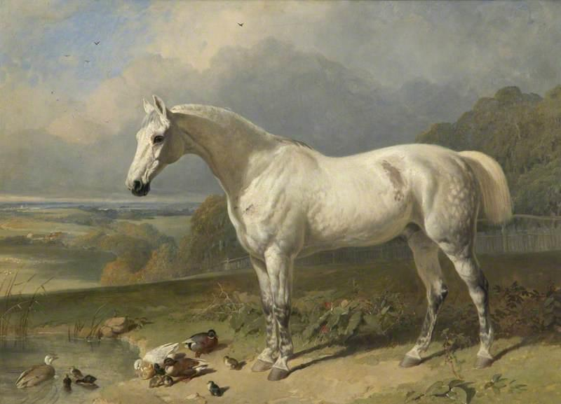 A Grey Horse and Ducks in a Landscape