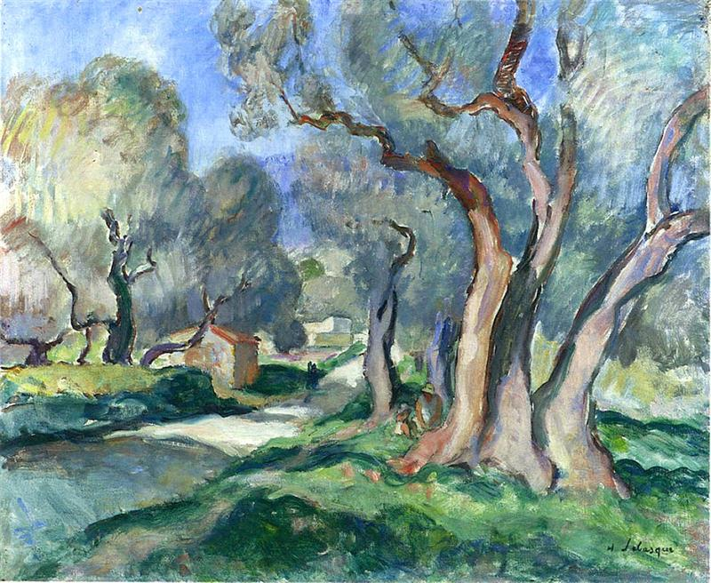 Path among the Olive Trees
